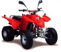 ATV 300 Sport 5-Gang & Reverse BJ 2004-2005