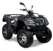 ATV 320 Canyon BJ 2012-2016